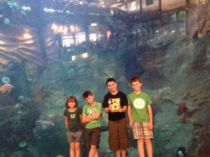 Cousins Aquarium